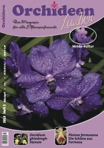 Ausgabe März / April 2013