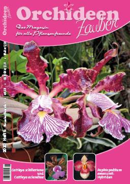 OrchideenZauber 2020-6